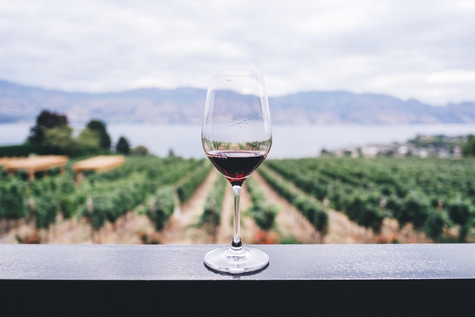 Wine Tasting in Napa