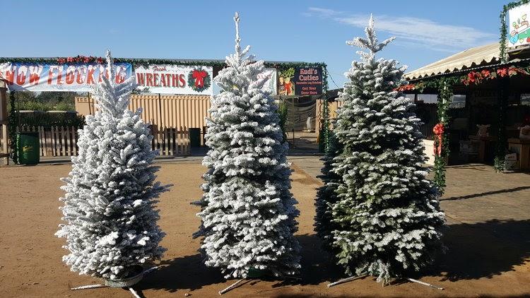 Tanaka Farms Holiday Market Stand and Tree Lot