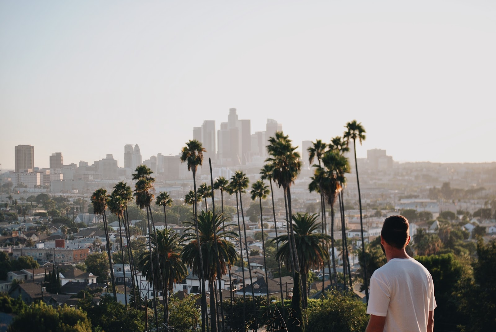 Guy staring at palm trees in LA