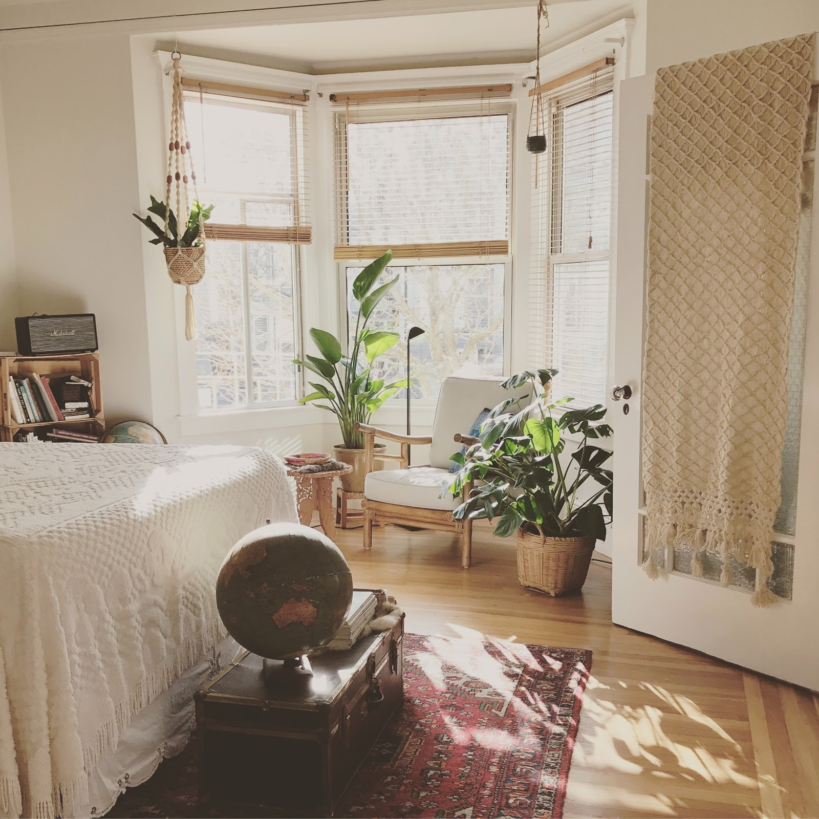 Apartment with plants and large bright windows