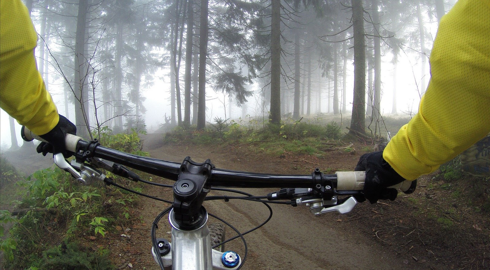 first person view of someone riding a bike in a forest