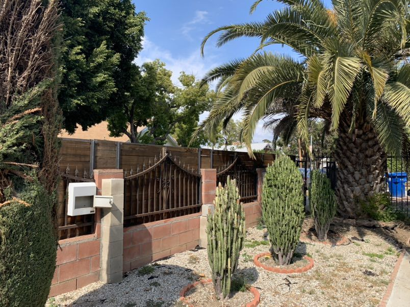 Outside plants, palm tree, wood gate