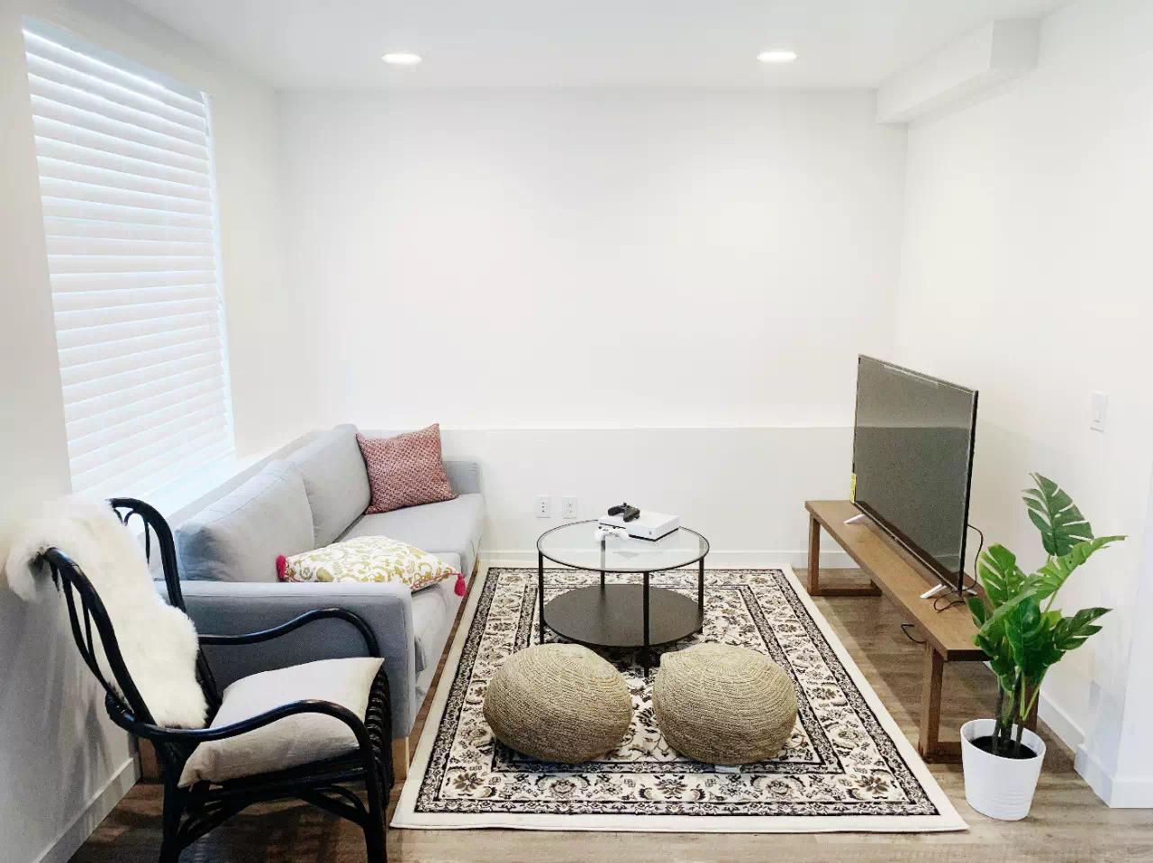 living room space, small green plant, sofa and flatscreen tv